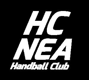 HC Neustadt Aisch